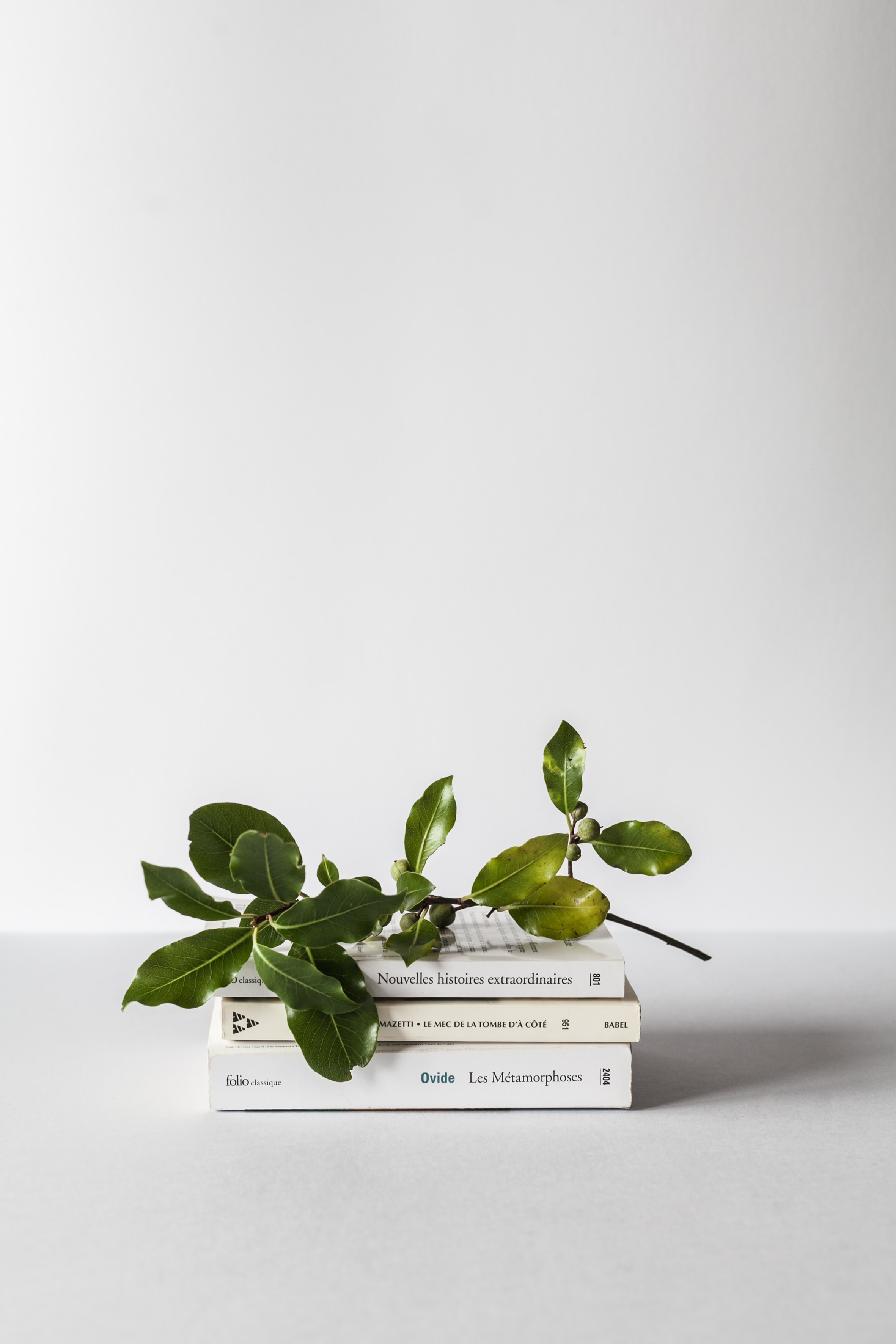 A stack of books and a tree branch